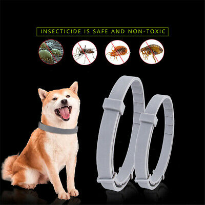 Natural Flea Collar For Dogs/Cats Flea and Tick Protection Up to 6 Months G7C4P