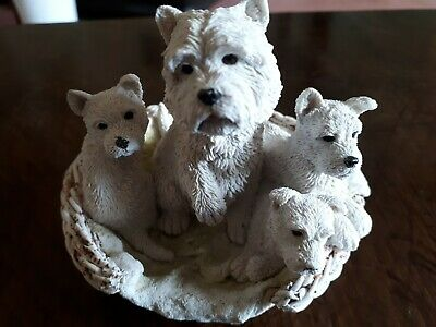 Westie Mum and Puppies in a basket