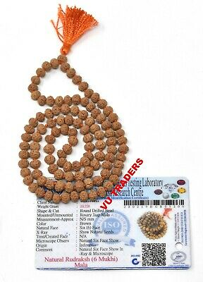 6 Mukhi Rudraksha Mala / Six Face Rudraksh Rosary Lab Certified 108+1 Beads 6 MM