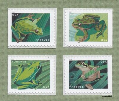 Scott #5395-98 2019 Frogs (Booklet Singles Set of 4) 2019 Mint NH - *In Stock*