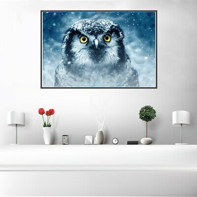 Nordic Owl Animal Art Photo Oil Painting Canvas Poster Home Wall Decor Unframed
