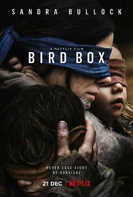 Netflix Originals Bird Box HD DVD Transcription Service 2018 Sandra Bullock