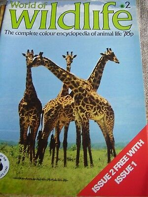 World Of Wildlife # 2 By Orbis Africa Hunters And Hunted Of The Savannah 1971