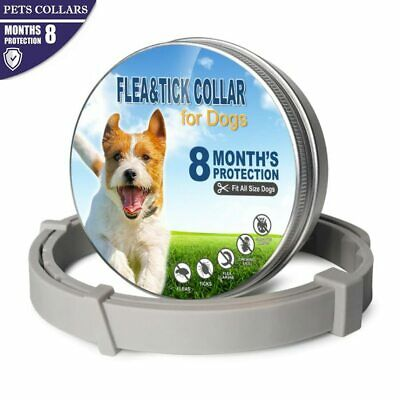 Dog Cat Pet Collar Anti Flea Tick Mosquitoes Insect for Small Medium Large