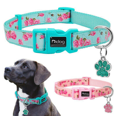 Fashion Pet Dog Collar Nylon & Personalized Dog ID Tags Paw Glitter Engraved SML