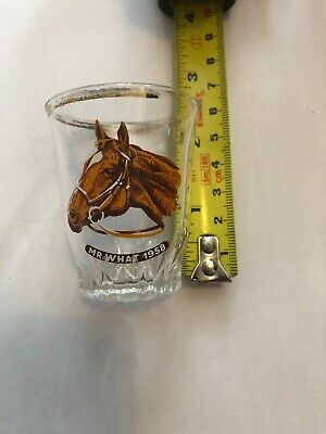 Small Decorative Antique Glass With Racehorse Mr What 1958