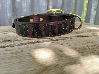genuine leather solid brass dog collars  xs-xxxl