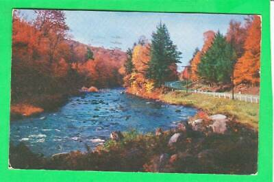 Postcard ~ Sacandaga River Speculator New York Adirondacks ~ Vintage 6984