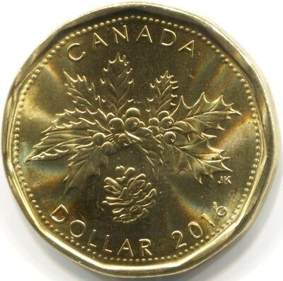 2016 CANADA UNC SPECIMEN ONE DOLLAR Coin from RCM Set