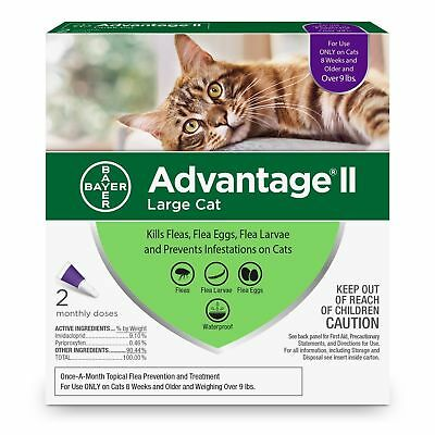 Bayer Advantage II Flea Prevention for large Cats 4 doses over 9 lb New Release
