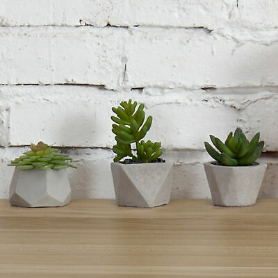 Set of 3 Desktop Faux Succulent Plants in Geometric Cement-Tone Planters