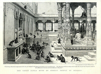 THE GREAT DURGA KUND OR MONKEY TEMPLE OF BENARES Historical Print c.1894