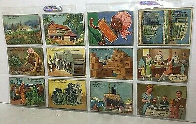 CWS Co Story Of Tea Full Set Of 12 Large Collector Cards Antique Circa 1925 UK