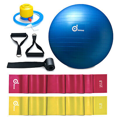 Exercise Yoga Ball 65cm+ 2 Resistance Band Kit Fitness Pilates Stability Workout