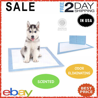 Puppy Training Scented Pads For Dog Cat Disposable Absorbent Odor Reducing Mats