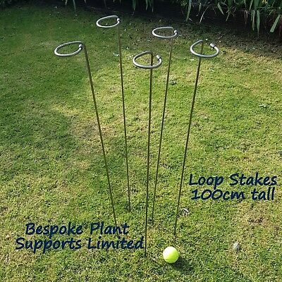 "5 pack of 100cm ( 39"" ) tall Loop stem/flower supports. 6mm mild steel"