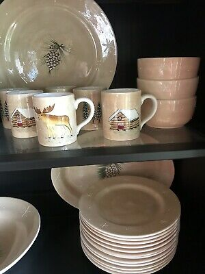Home Winter Holiday Northwoods Lodge Log Cabin Snow Flakes 43pc Dinnerware Exc!!