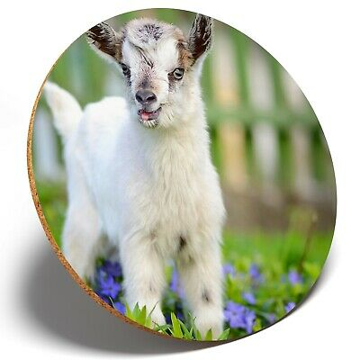 1 x  Cute Little Baby Goat  - Round Coaster Kitchen Student Kids Gift #8565