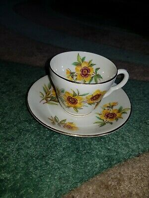 Vintage Retro Tea Cup and Saucer Collector Stanley Fine Bone China