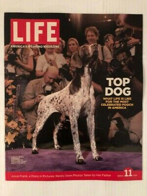 Top Dog Carlee at the Westminster Dog Show Life Magazine, March 11, 2005