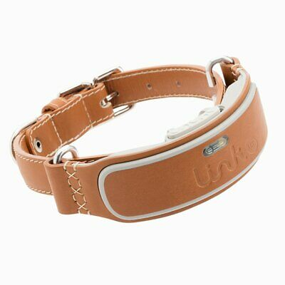Link Akc Smart Dog Collar With Gps Tracker  Activity Monitor (Leather Or Sport)