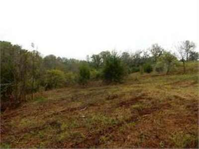 9.99 ACRES OF VACANT LAND near WILLIAMSTOWN in GRANT COUNTY, KY-REDUCED TO SELL!