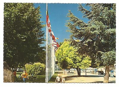 NSW - c1970s POSTCARD - FLAGS OF THE NATION, MAIN STREET, COOMA, NEW SOUTH WALES