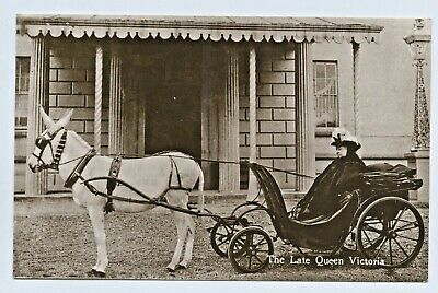 C.1908 Rp Npu Postcard Late Queen Unusual Card Victoria In Donkey Cart/Wagon D48