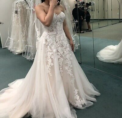 Champagne Bridal Gowns Tulle Ivory Lace Country Vintage