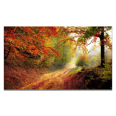 Autumn Forest Scenery Canvas Painting Poster Home Art Hanging Wall Decor Gift