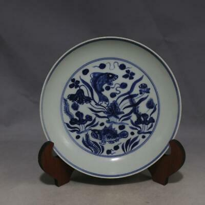 One Nice Chinese Ming Blue White Porcelain Fish Plate