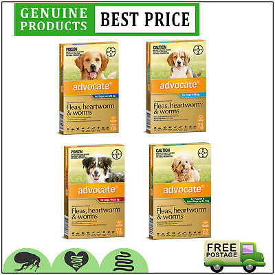 ADVOCATE for Dogs 3 Doses All Sizes Flea Heartworm and Worm Treatment by Bayer