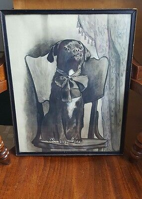 "Antique Dog Portrait Charcoal Drawing  14""×18"" 19th Century K-9"