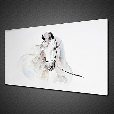 Portrait Of Beautiful White Andalusian Horse Canvas Print Wall Art Picture Photo
