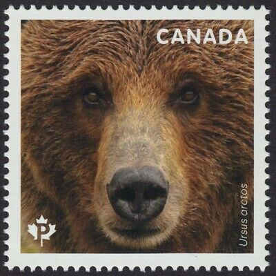 GRIZZLY BEAR = Stamp from Souvenir Sheet Canada 2019 MNH VF