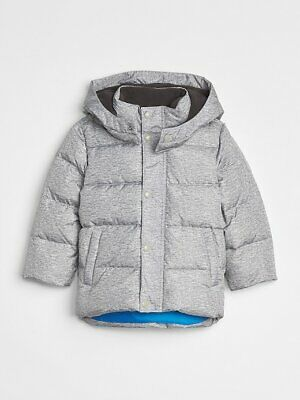 NEW NWT Baby Gap Boys Gray & Blue Max Puffer Cold Control Coat Jacket 2T 2 yrs