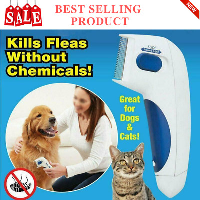 Electric Dog Cat Pet Hair Brush doctor Tick Flea Comb Head Lice Killer Remover