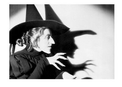RARE Wizard of Oz Promo PHOTO Wicked Witch of the West, Margaret Hamilton