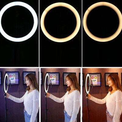 26CM Studio Live Led Ring Light For Phone Selfie Light Beauty Photograph &Triopd
