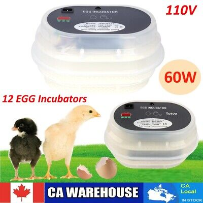 AUTOMATIC 12 Egg Chicken Quail Poultry Turner for incubator 110V