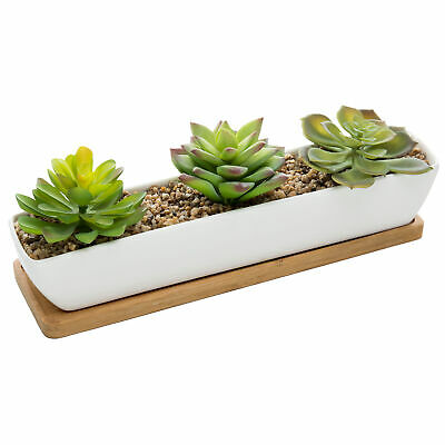 Artificial Succulent Arrangement in 11-Inch Ceramic Planter with Bamboo Tray