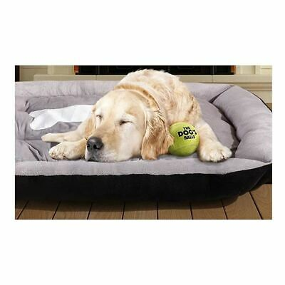 Pawz Heavy Duty Pet Bed Mattress In Size Extra Large