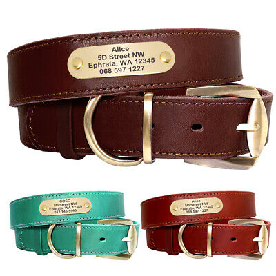 Genuine Leather Personalized Dog Collar Custom Engraved Nameplate Metal Buckle