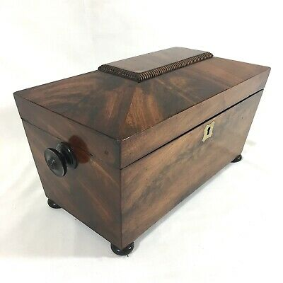REGENCY 19th Century Tea Caddy Sarcophagus Mahogany Twin Compartment