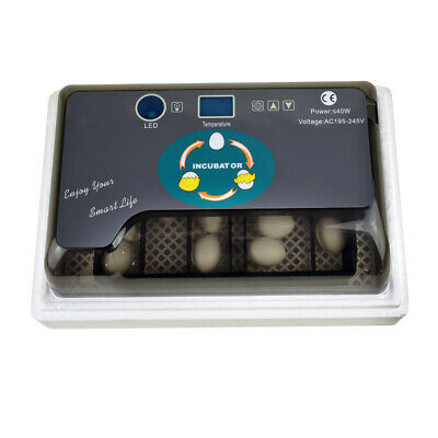 Ee_ Uk_ Large Capacity 12 Eggs Mini Incubator For Chicken Quail Turkey Poultry B