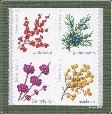 *NEW* 2019 Winter Berries (Booklet Block of 4) 2019 Mint NH - *In Stock*