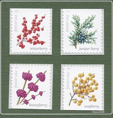 *NEW* 2019 Winter Berries (Booklet Singles Set of 4) MNH - (Ships after 9/17)