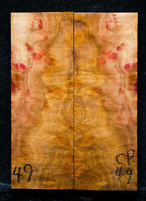 """Camphor Burl #49 Knife Scales 5""""x1.75""""x3/8"""" see my 100 species 1000 scales"""