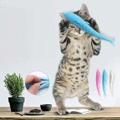 Pets Cat Silicone Molar Stick Fish Shape Toothbrush  Teeth Cleaning Toy USA