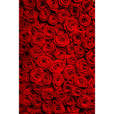 Red Rose Wedding Photo Background Vinyl Valentine's Day Floral Wall Backdrops UK